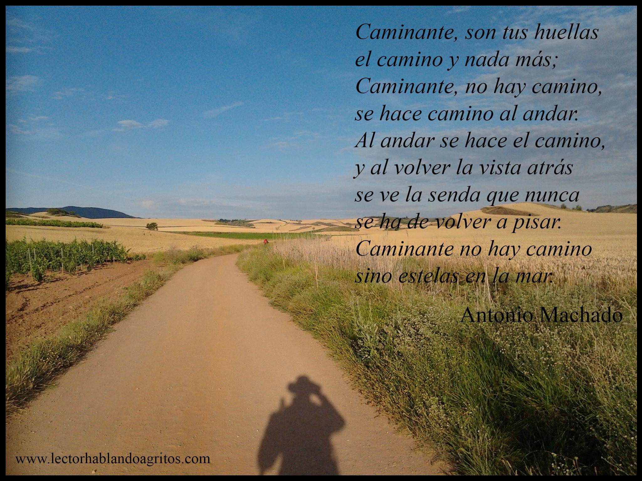 Antonio Machado Extracto De Proverbios Y Cantares Xxix